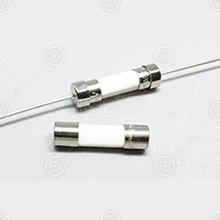 FSC1A250V+P 一次性保险丝 5*20mm 快断