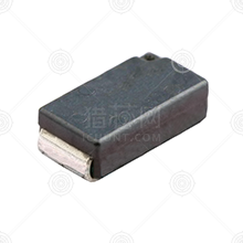 SL1TTER100F采样电阻品牌厂家_采样电阻批发交易_价格_规格_采样电阻型号参数手册-猎芯网